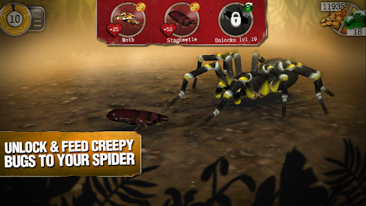 Real Scary Spiders v1.2.5