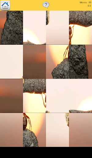【免費解謎App】Ants Games-APP點子