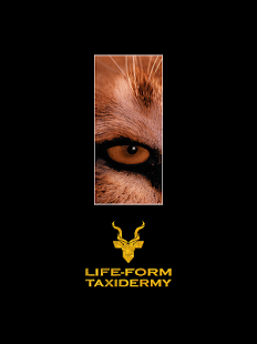 Life-Form Taxidermy- screenshot thumbnail