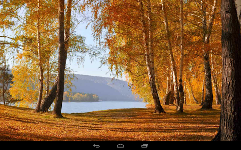 Autumn Wallpaper- screenshot thumbnail