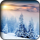 Winter Wallpapers