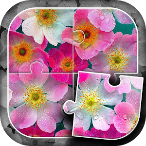 Flowers Puzzle Game for PC and MAC