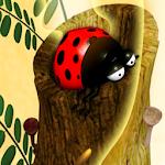 Beetle Gold Run