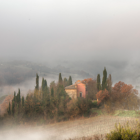 Fogs over the hills by Maurizio Martini - Landscapes Mountains & Hills ( countryside, haze, tuscany, italian, farmhouse, house, beauty, landscape, spring, olive, farm, nature, tree, idyllic, cypress, italy, orcia, hill, picturesque, pienza, peaceful, toscana, green, scenics, mysterious, quirico, agriculture, mood, morning, homestead, rural, country, amazing, field, foggy, dawn, residence, fog, meadow, dreamland, agriturismo, scenery, sunrise, tuscan, garden,  )