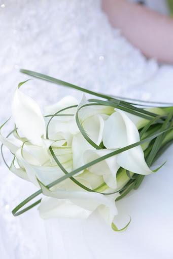Hochzeits-App