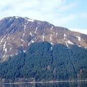 Beautiful Scotland Live Wallpa