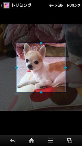 玩解謎App|あなたの保存写真がスライドパズルに変身!!「パズルメーカー」免費|APP試玩