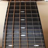 Guitar Fretboard Addict FREE
