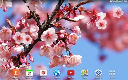 【免費個人化App】櫻花動態桌布-APP點子