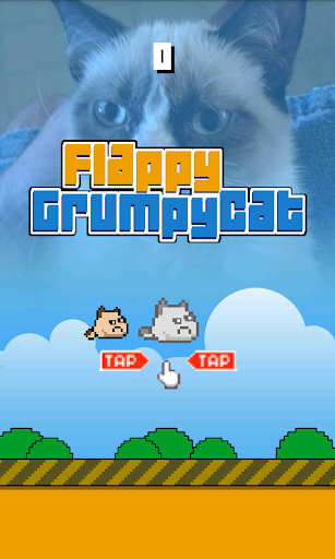 Flappy Grumpy Cat