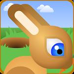Bunny Rabbit Jump Run Race