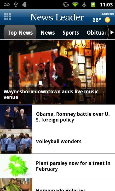 The News Leader - screenshot