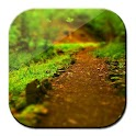 Galaxy S4 Forest Walk LWP logo