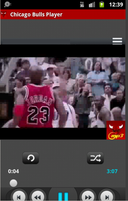 Chicago Bulls Player - screenshot