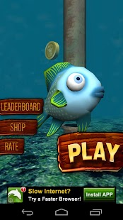 Temple Fish Run :Fish in water