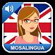 Aprender Inglés con MosaLingua