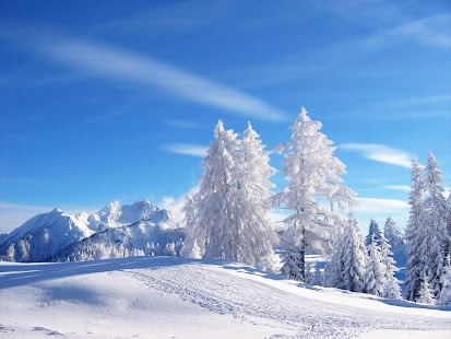 Winter Desktop HD Wallpaper - screenshot thumbnail