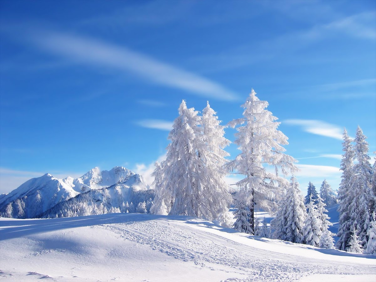 Winter Desktop HD Wallpaper - screenshot