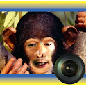 Animal Morph Camera icon