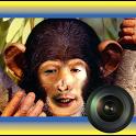 Animal Morph Camera icon
