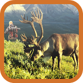 Deer Skill Hunter Challenge