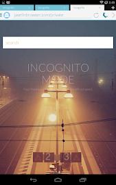 Javelin Browser Screenshot 10