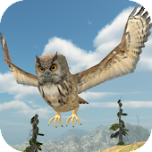 Owl Bird Simulator