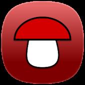 Энциклопедия грибов