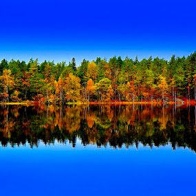 Autumn-Jewerly Around The Lake by Lillian Molstad Andresen - Landscapes Waterscapes ( water, rundvann lake, colorful, reflections, lake, forest, landscape, norway, sky, nature, autumn, fall, trees,  )