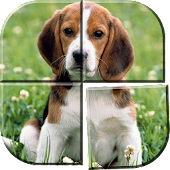 Best Dog Puzzle Games Free