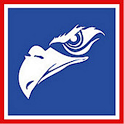 Adler Mannheim Fanprojekt icon