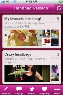 Handbag Passion!- screenshot thumbnail