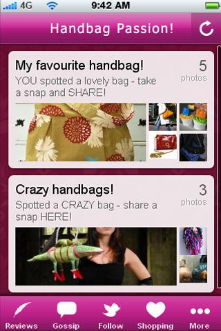 Handbag Passion! - screenshot