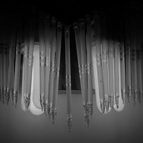lighting the dark... by Nisha B. - Black & White Objects & Still Life ( bulb, lamp, grey, light, black )