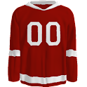 Detroit Red Wings News logo