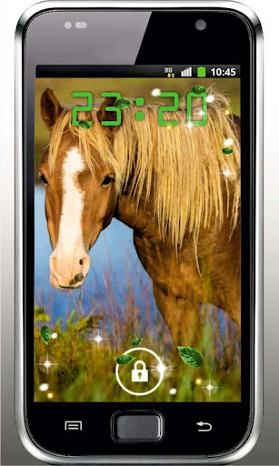 Horse Photo HD live wallpaper