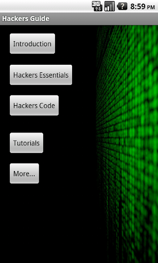 Ethical Hackers Guide