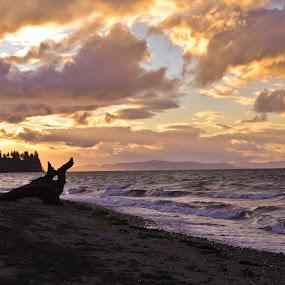 by Blanca Braun - Landscapes Beaches