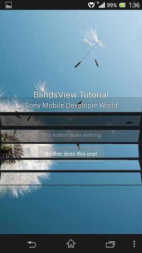 Blinds View Tutorial
