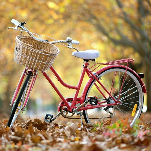 Download Bicycle Wallpapers For PC
