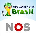 FIFA WK 2014 icon