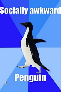 Socially Awkward Penguin - screenshot thumbnail