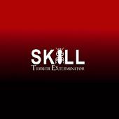 Skill Termite