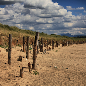 On the beach by Ferdinand Debnárik - Landscapes Beaches
