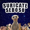 Suricate Seboso icon