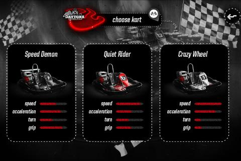 Daytona Racing Karting Cup - screenshot