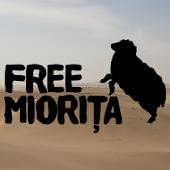 Dacioti pana-n Mongolia