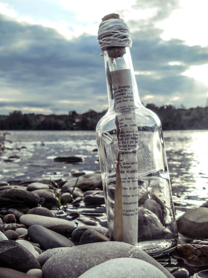 by Mira Teodorovic - Nature Up Close Water (  )