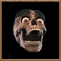 Exclusive Skull HD icon