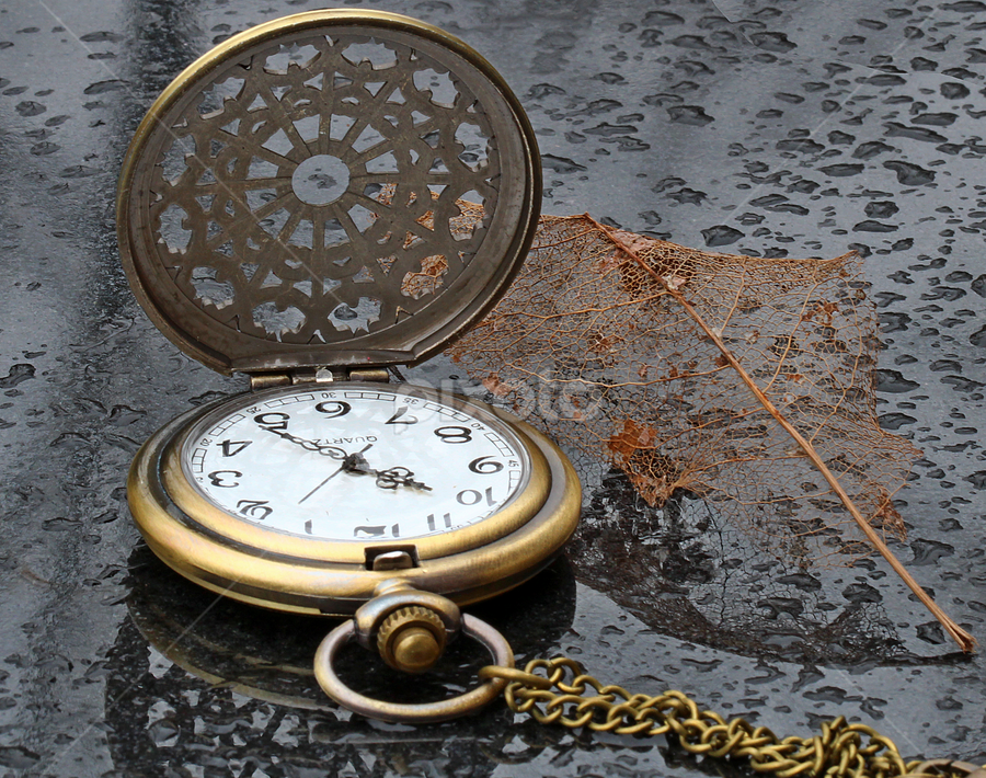 by Dipali S - Artistic Objects Other Objects ( watch, leaf, pocket watch.artistic )